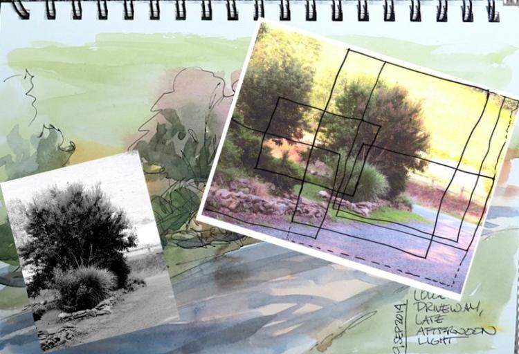 drivewaydiscovery01