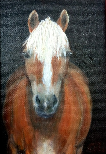 """ You're Kind of Cute- Haflinger"", oil on wood by Gaylene Laimbeer $135"