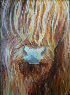 """"""" I See You- Highland Cow"""" oil on canvas by Gaylene Laimbeer, $325"""