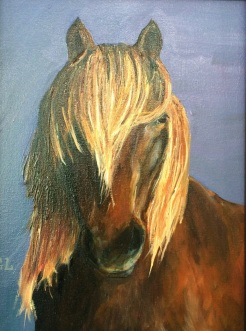 """"""" I See You- Icelandic Horse"""" oil on canvas by Gaylene Laimbeer $325"""