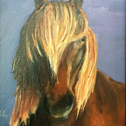 """ I See You- Icelandic Horse"" oil on canvas by Gaylene Laimbeer $325"
